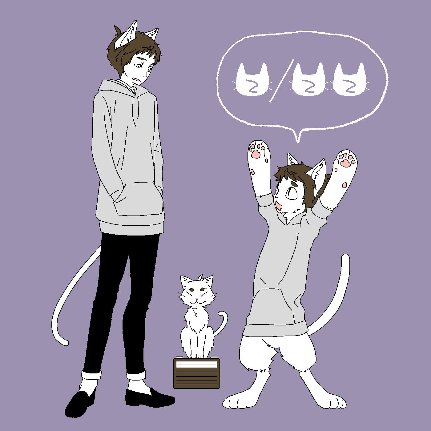 猫三段活用
