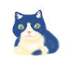 もっちりしている猫4号