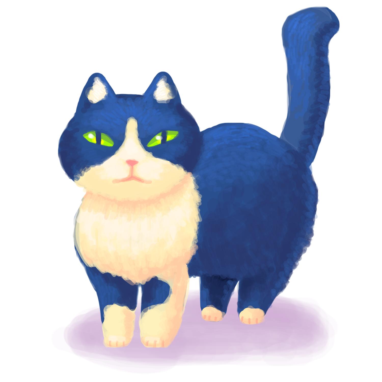 もっちりさせすぎた猫4号