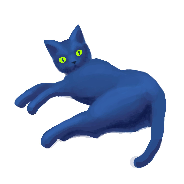 黒猫だった猫2号